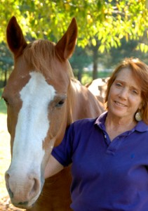 nancy, working in holistic therapy with horses